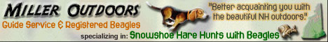 Link to us!  -  Miller Outdoors :: Guide Service & Registered Beagles